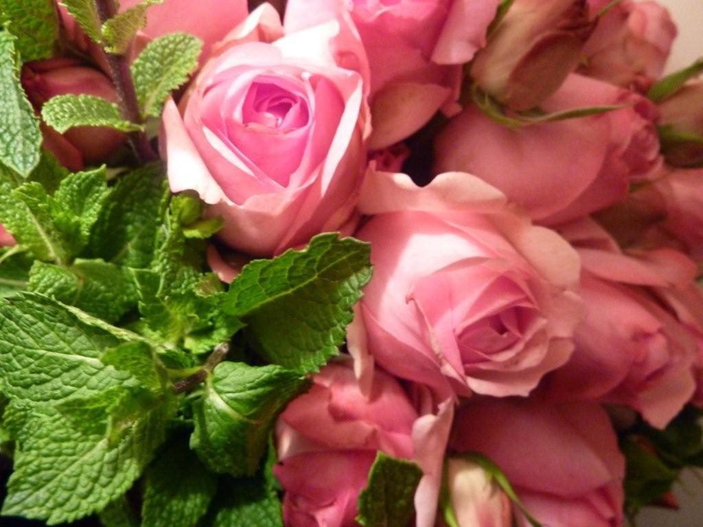 How to fake a beautiful bouquet and come up roses the modern i wish you could scratch and sniff the screen because apart from looking drop dead gorgeous the scent was exquisite the combined fragrance of the two hit izmirmasajfo