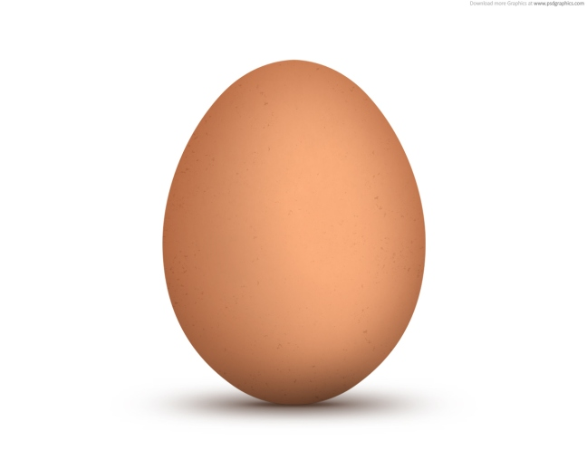 Image result for an egg
